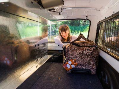 Gepäck verstauen im Britz Allrad/4WD Camper Outback in Australien
