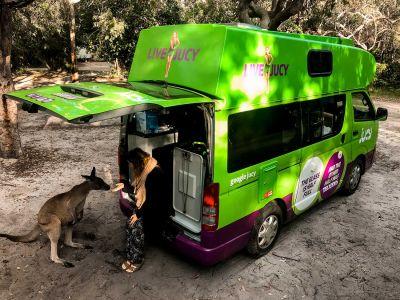 Känguru füttern mit dem Kompaktcamper Condo von Jucy Australien